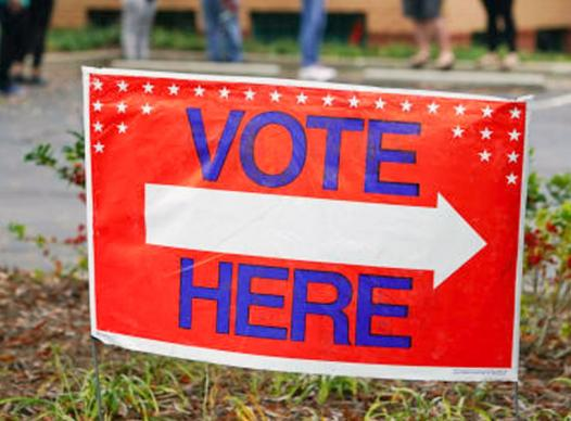picture of vote here sign