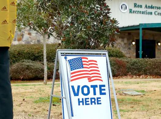picture of voting sign