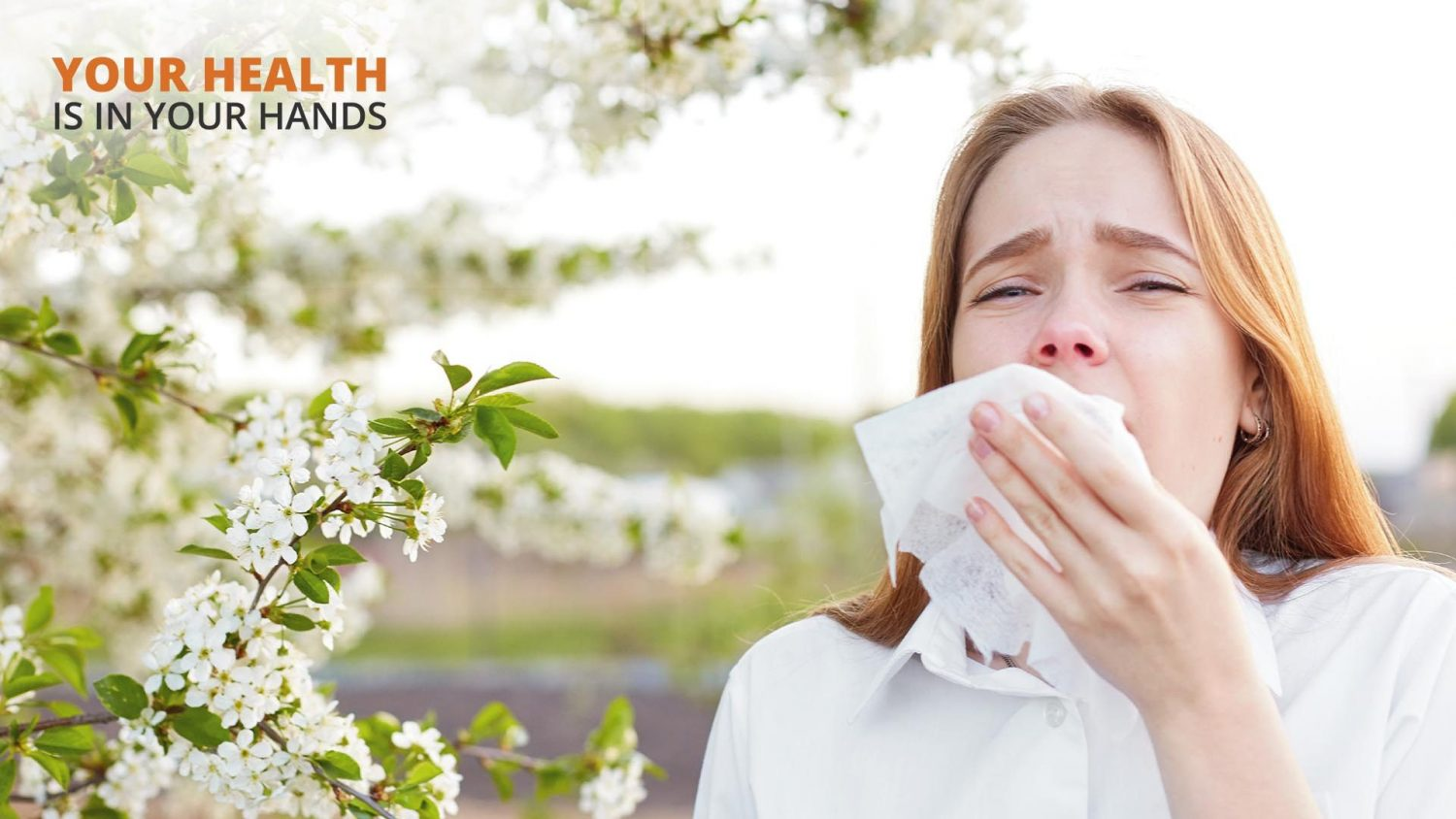 The Best Ways to Manage Warm Weather Allergies in Montana