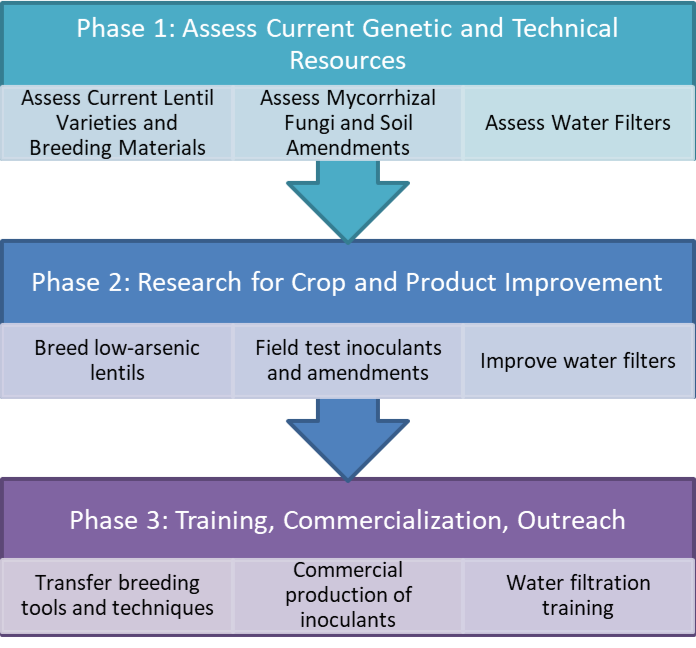 Chart showing the 3 phases of project.