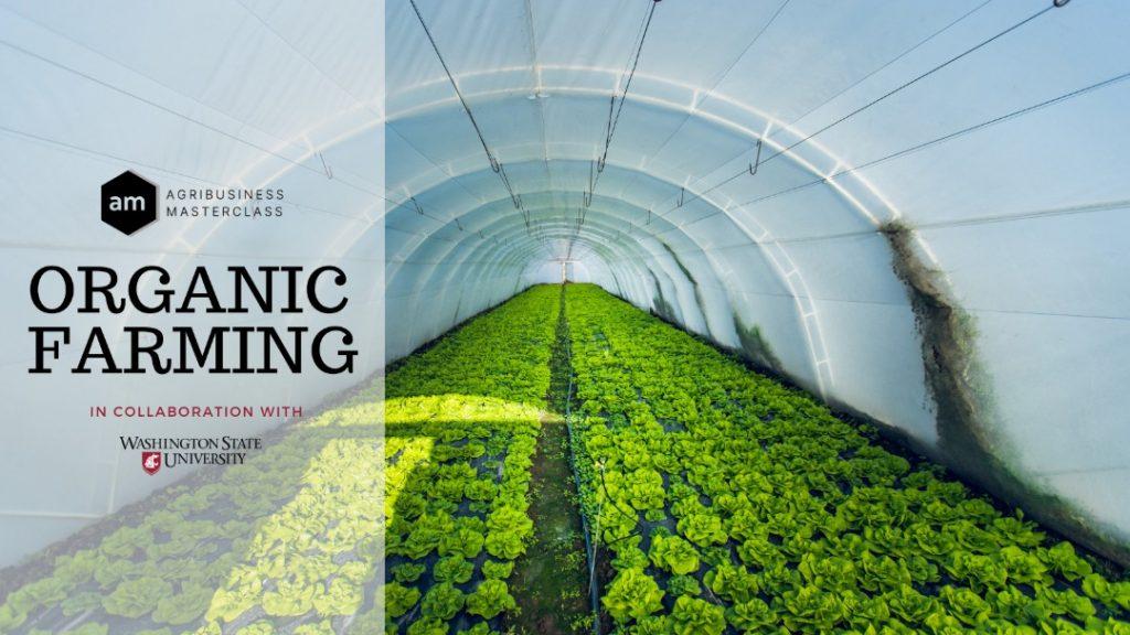 Organic Farming Agribusiness Masterclass, in collaboration with Washington State University
