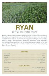 Ryan flyer.