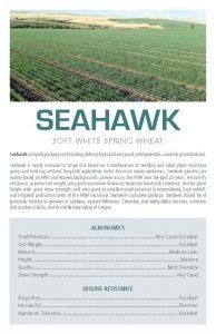 Seahawk flyer.