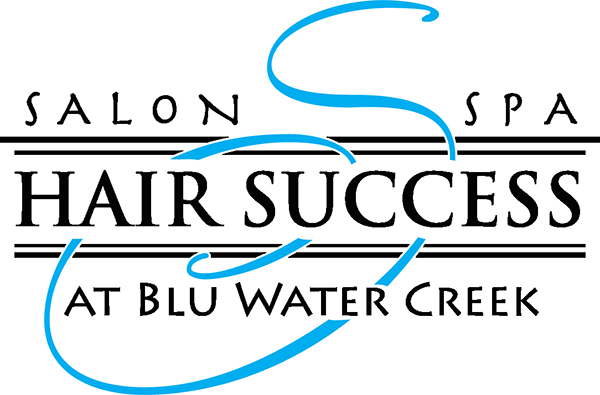 Hair Success Salon and Spa logo