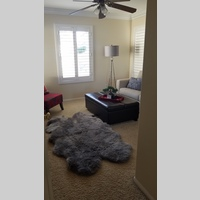 Searching for roommates in South Sd