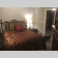 Searching for roommates in North DFW