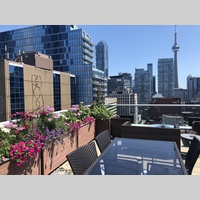 Searching for roommates in Toronto