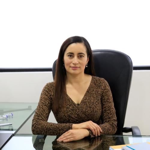 Diana Marcela Quevedo Gualteros