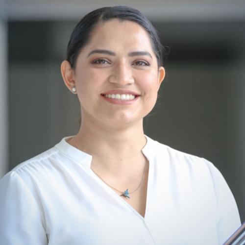Mirelle Graciela Parra Villa