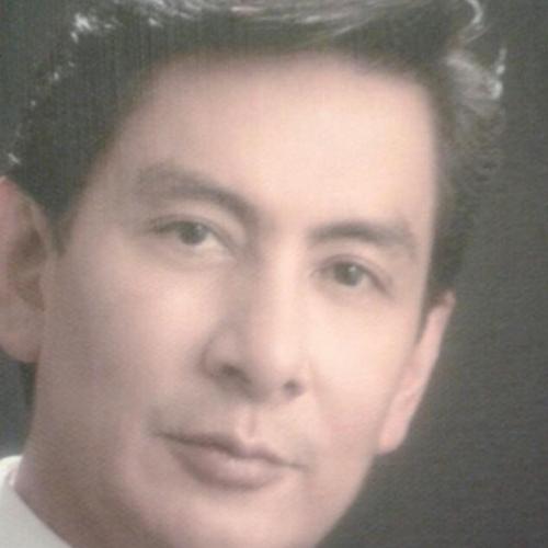 Ricardo Agustín Pineda Rementería