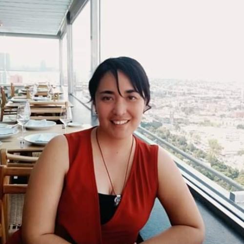 Erika Pamela Dominguez Mejia