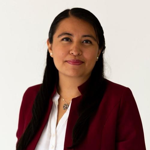Ana Laura Telles Martínez