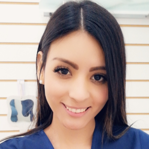 Erika Andrea Hernandez Camarillo