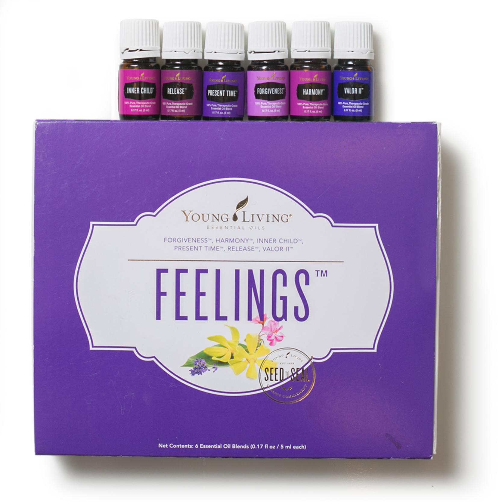 Feelings Kit
