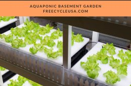 HOMEMADE AQUAPONICS