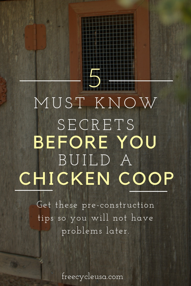 5 Secrets To Know Before You Build A Chicken Coop