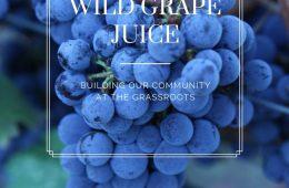 DIY Healthy Wild Grape Juice