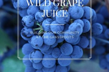 DIY Healthy Wild Grape Juice