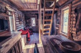 Log Cabin Wilderness Homestead, Maple Syrup, Wild Edibles, Primitive Skills