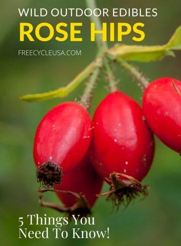Rose Hip Edibles