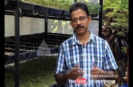 Hydroponics: New Method of Farming : Money Time 15 Oct 2015