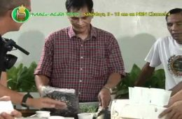 DA-BAR - UPLB: Simple Nutrient Addition Program (SNAP) Hydroponics Demo