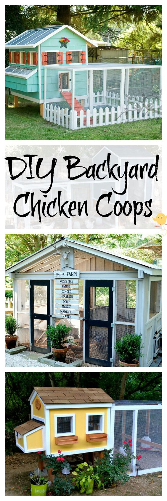 chicken-coop-plans
