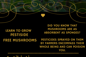facts about the mushroom