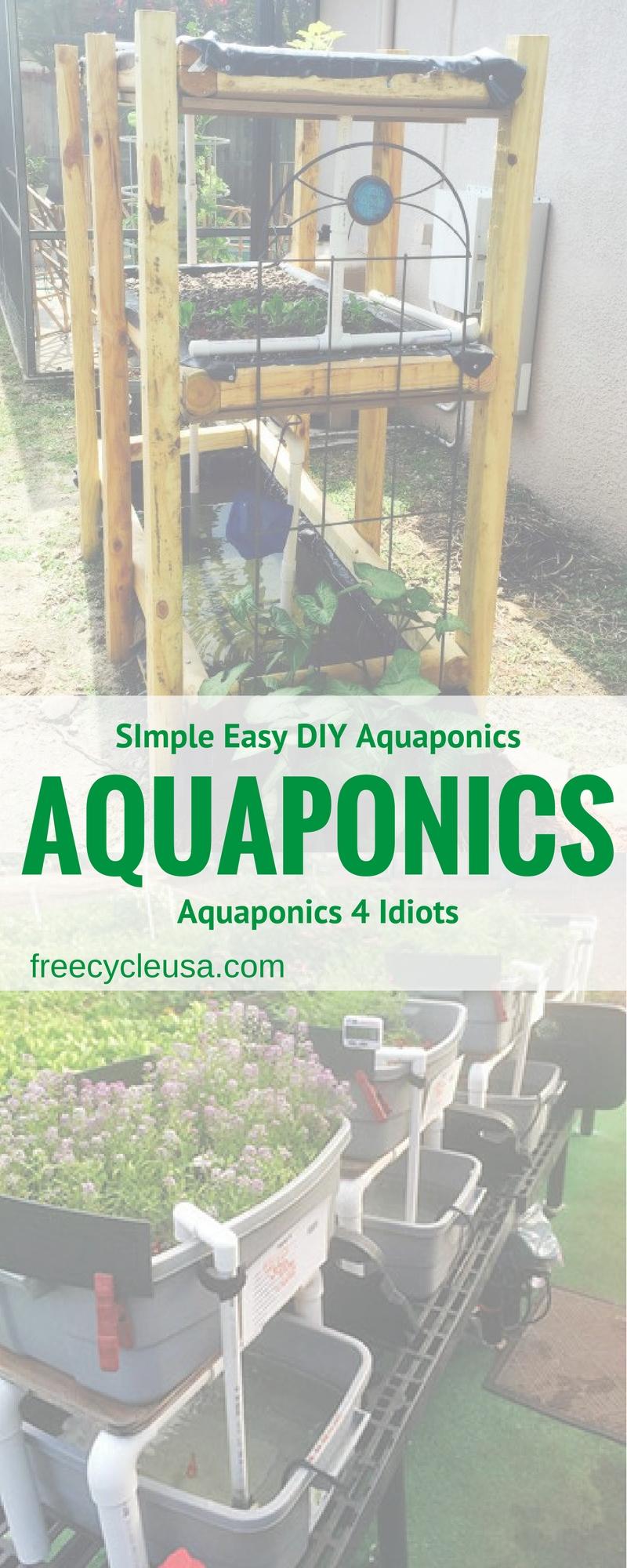 aquaponics7