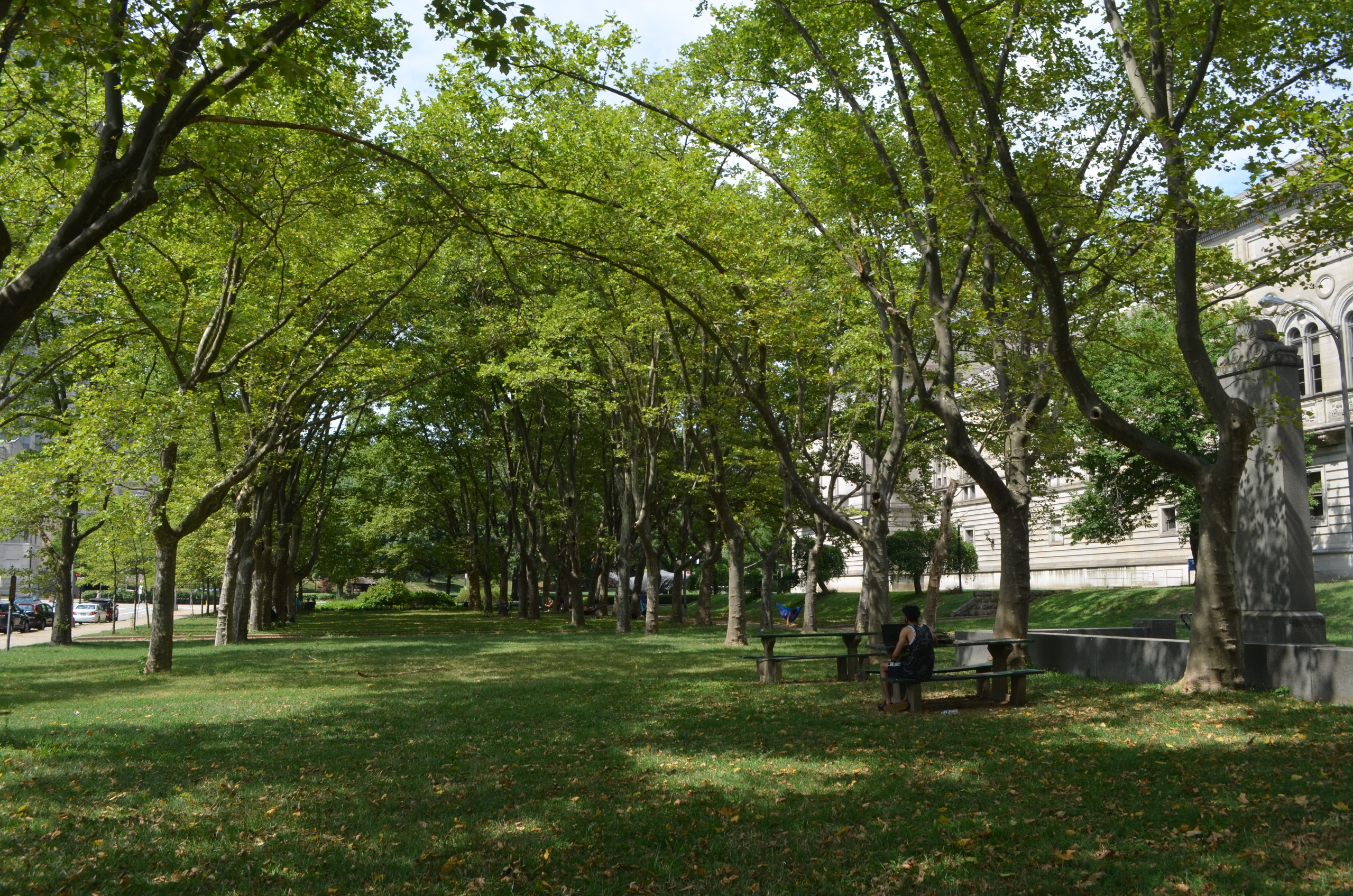 Schenley Plaza by the library where the public can picnic and hammock