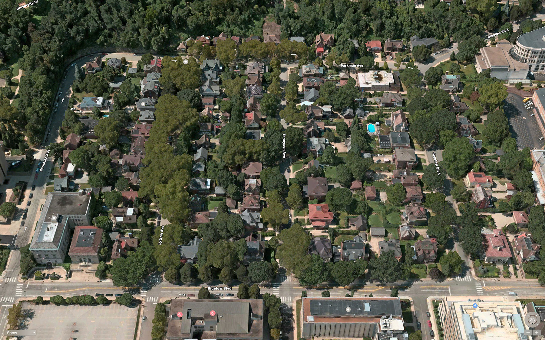 After: Schenley Farms has ample tree canopy shading streets and buildings.