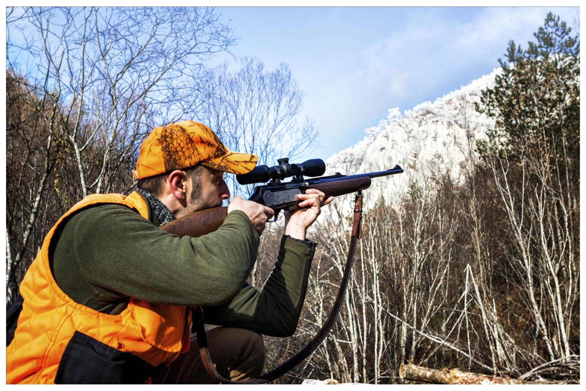 HA hunt2 2 c