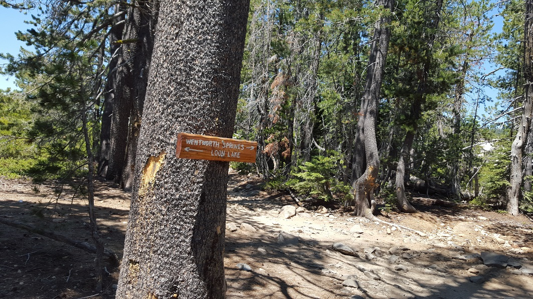 The Rubicon Trail - Waypoint 5: Wentworth Springs Split - Stay East