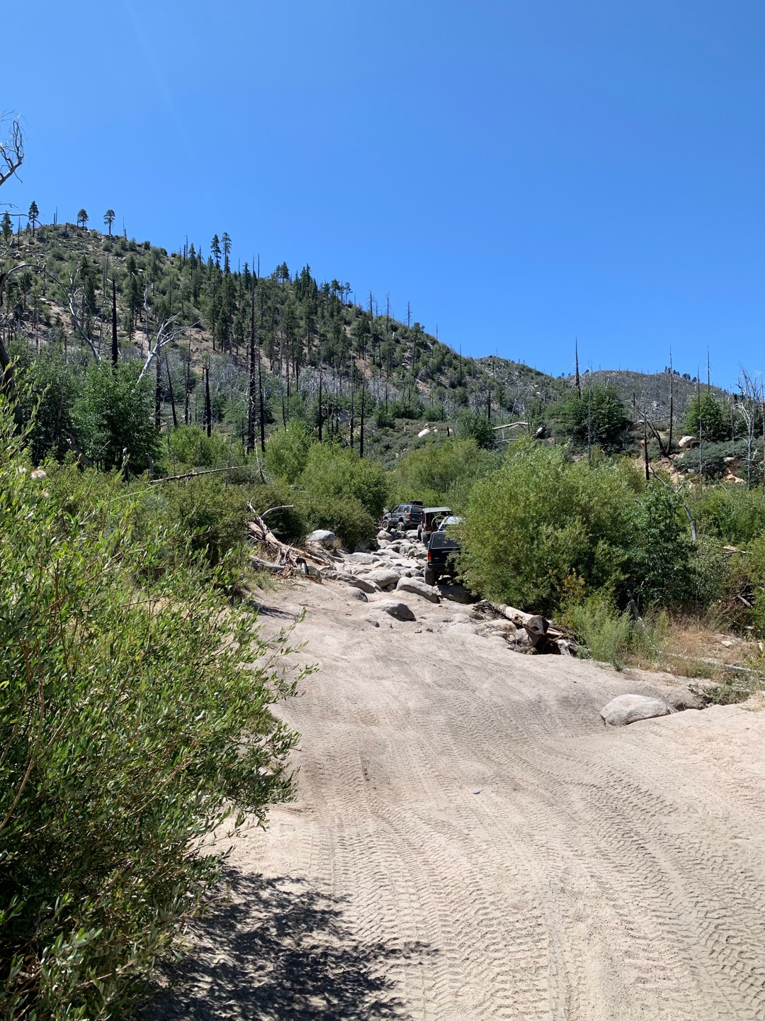 Trail Review: 3N93 - Holcomb Creek Trail