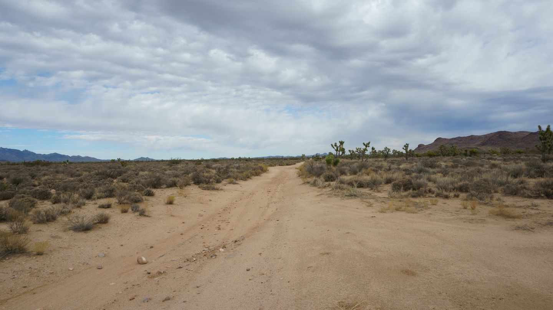 Mojave Road - Waypoint 31: Straight