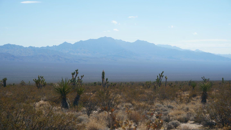 Mojave Road - Waypoint 47: Kelso Cima Road Crossing