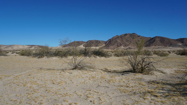 Mojave Road - Waypoint 58: Begin Fun Sandy Stretch