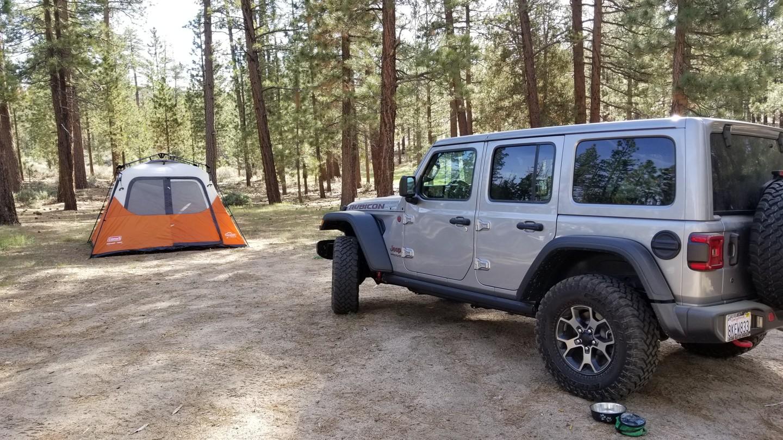 Camping: 3N10 – John Bull