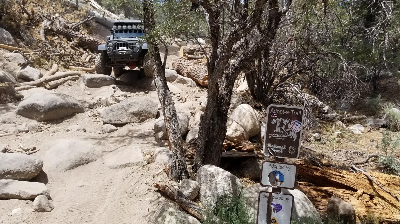 3N10 – John Bull - Waypoint 8: Western Rock Garden / Gatekeeper
