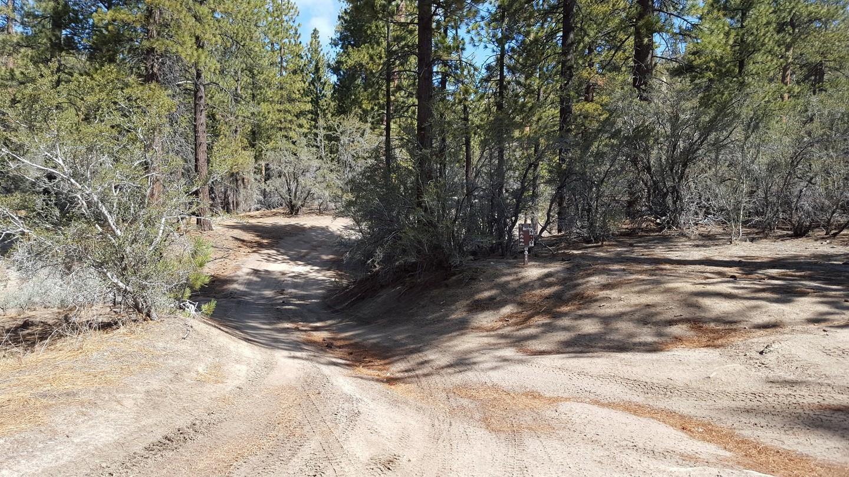 3N10 – John Bull - Waypoint 9: Western Trailhead