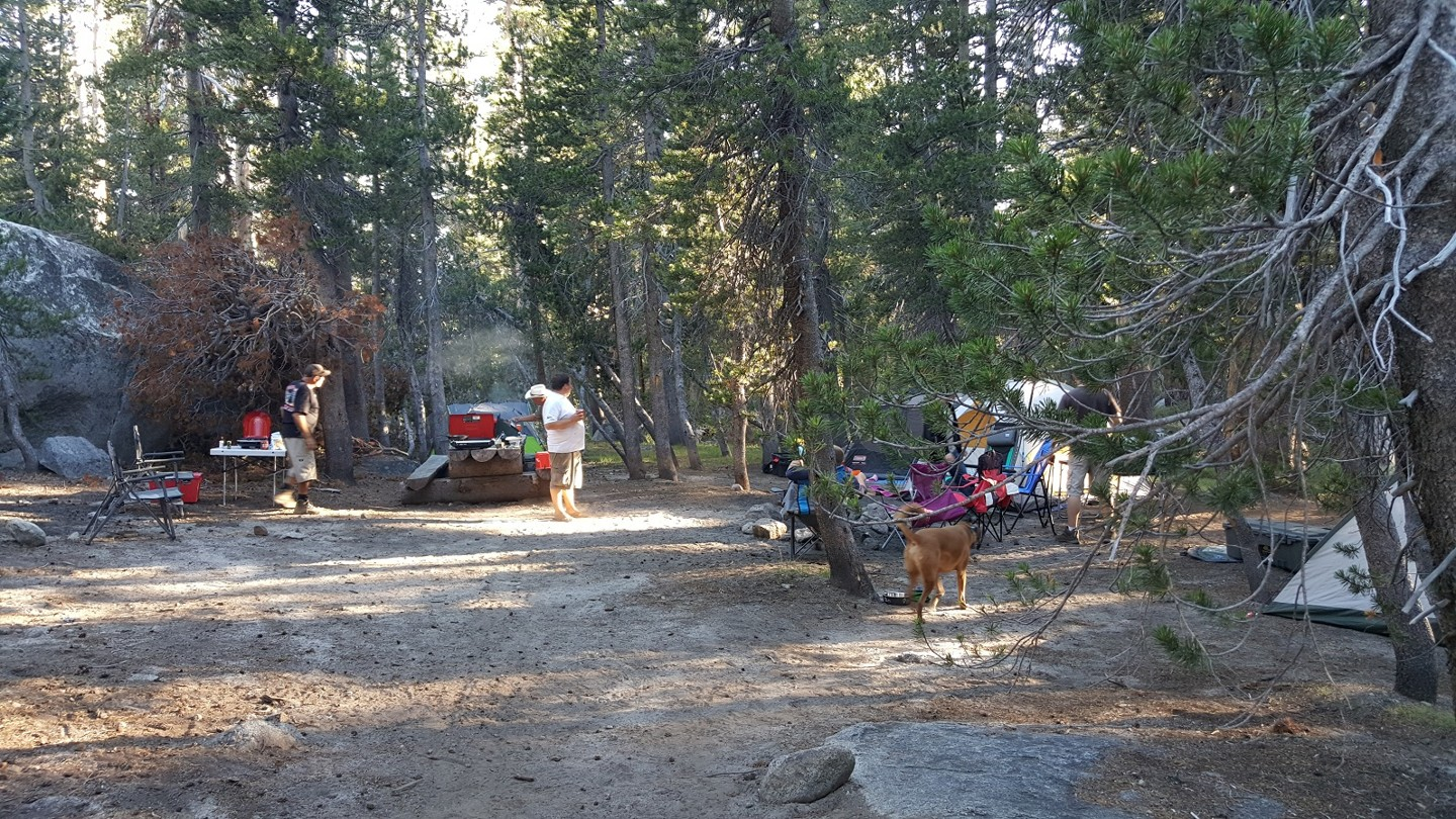 Camping: 3N16 - Holcomb Valley