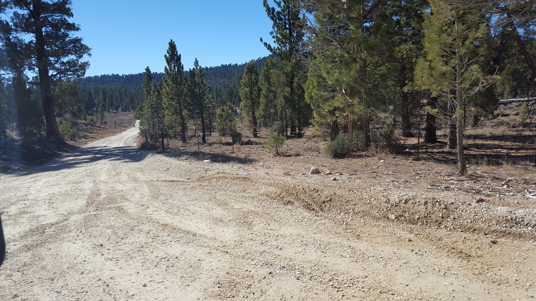 3N16 - Holcomb Valley - Waypoint 13: Continue Straight at 3N12 Intersection (Delamar Mountain)