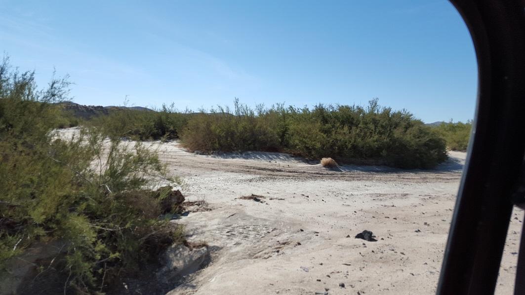 Mojave River / Wash - Waypoint 1: At Mojave River / Wash go North East