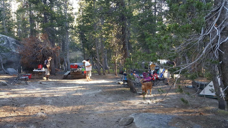 Camping: Dusy-Ershim  Trail