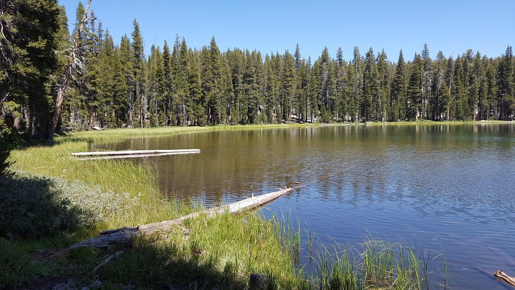 Dusy-Ershim  Trail - Waypoint 16: Ershim Lake Campground 2