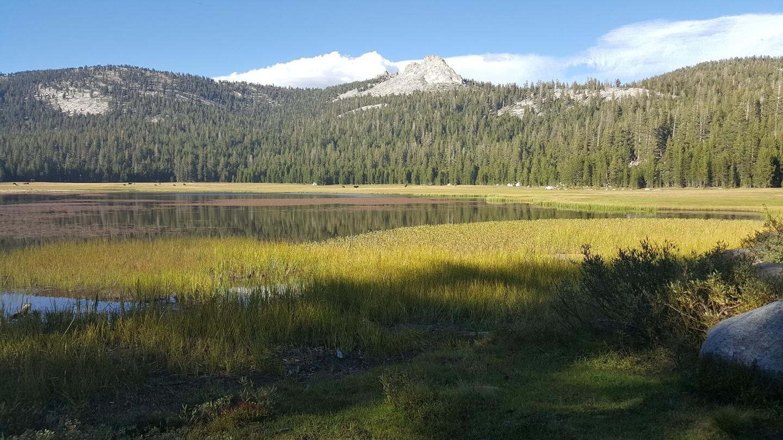Dusy-Ershim  Trail - Waypoint 19: Lakecamp Lake