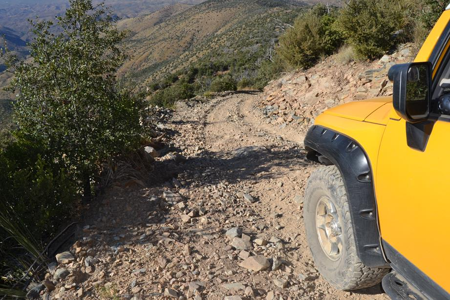 Trail Review: Rice Peak FR# 29