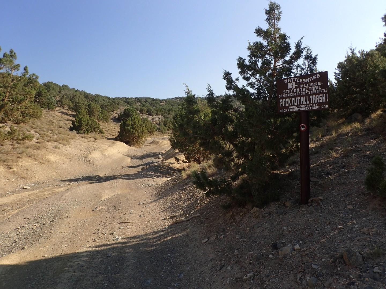 Rattlesnake - Waypoint 1: Trailhead