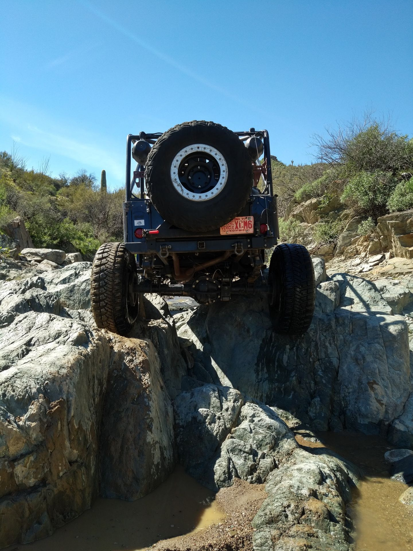 Trail Review: Lower Terminator TV2