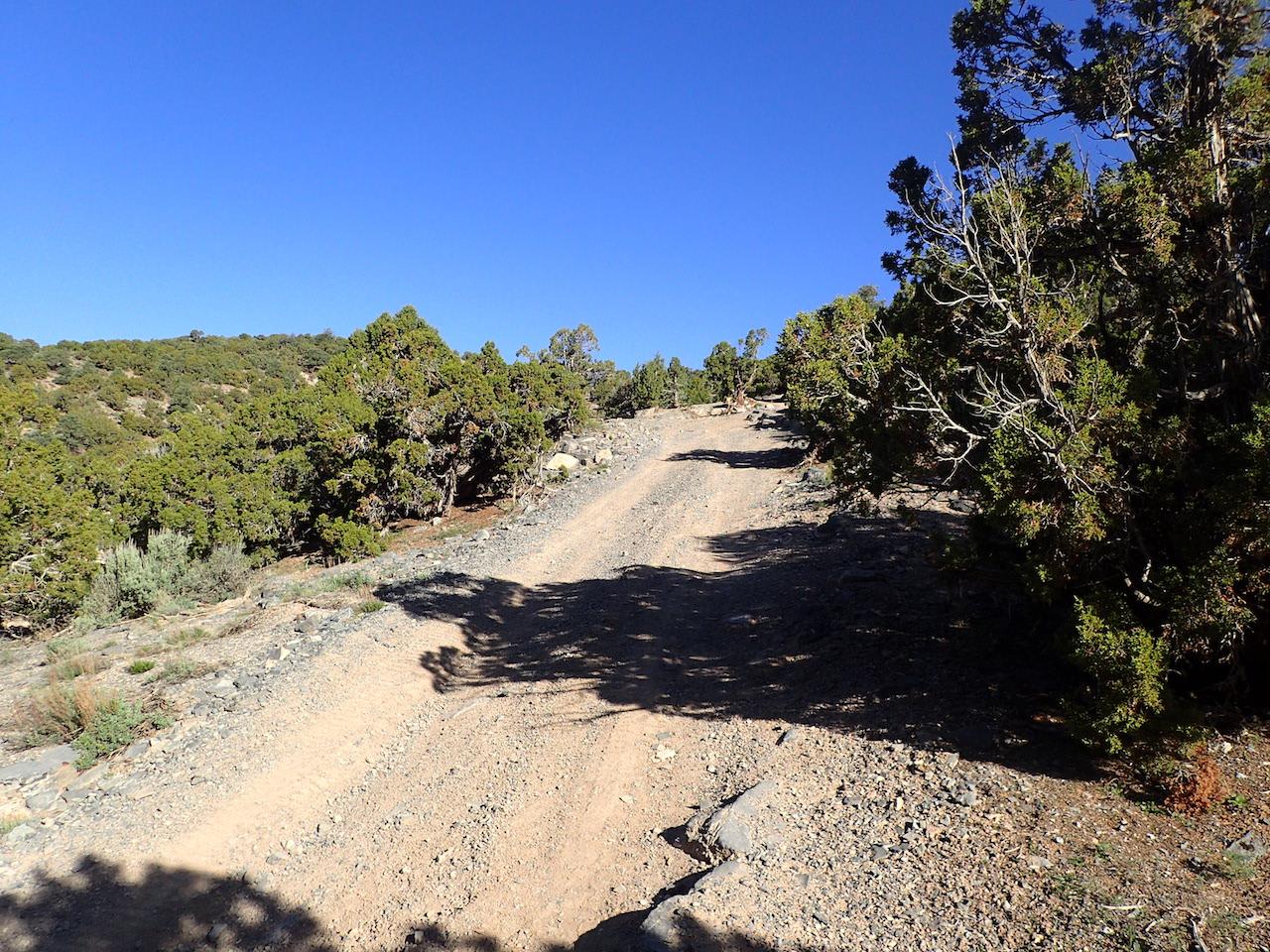 Sidewinder Exit - Waypoint 10: End